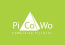 Logo picowo-01